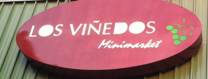 Minimarket Los Viñedos is one of Peñalolén.