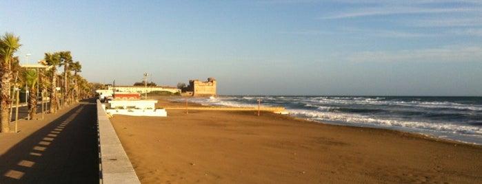 Spiaggia di Santa Severa is one of Europa.