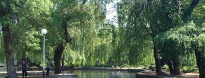 Городской парк им. Горького is one of Europa.