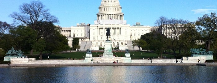 United States Capitol is one of NBC Politic Badge.