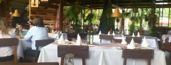 Hostería El Bosque is one of Restaurantes Visitados.
