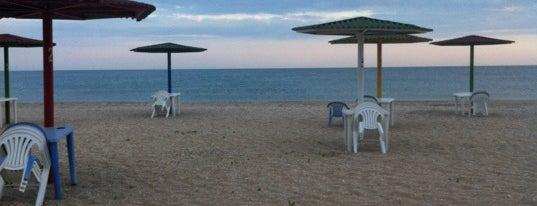 Türkan çimərliyi / Turkan Beach is one of Absheron Beaches.