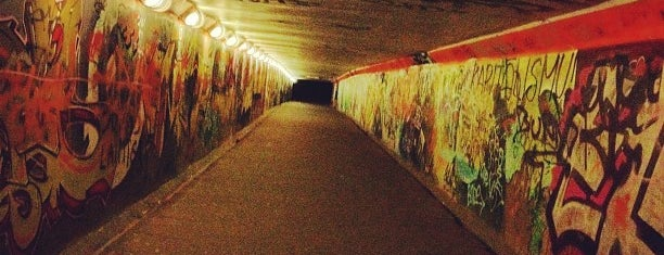 ZZ tunelis is one of Baltā nakts 2011.