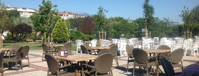 Şelale Nargile ve Kafeterya is one of kaydedilenler.