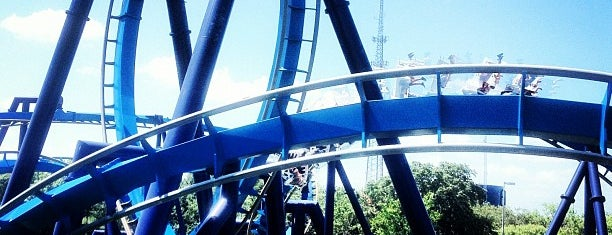 The Great White is one of Roller Coaster Mania.