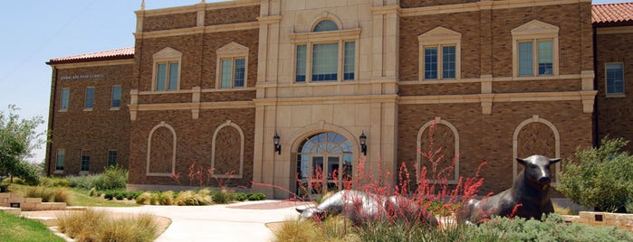 TTU - Animal & Food Sciences is one of University Public Art Collection.
