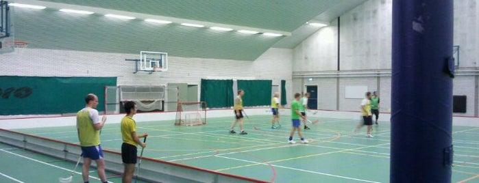 TU Delft Sports & Culture is one of TU Delft Places.