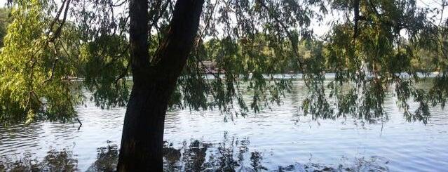 Weißer See is one of Grün und Blau Berlin.