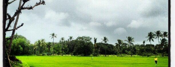 Goa is one of Best of GOA, #4sqCities.