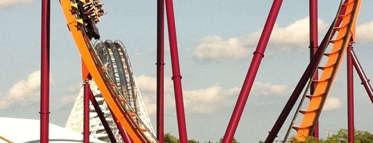 Raging Bull is one of ROLLER COASTERS.