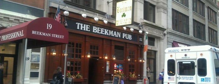 The Beekman Pub is one of Down down down town.