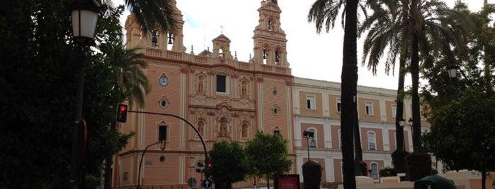 Catedral Nuestra Señora de la Merced is one of Catedrales de España / Cathedrals of Spain.