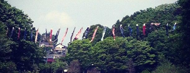 県立 四季の森公園 is one of お気に入り.