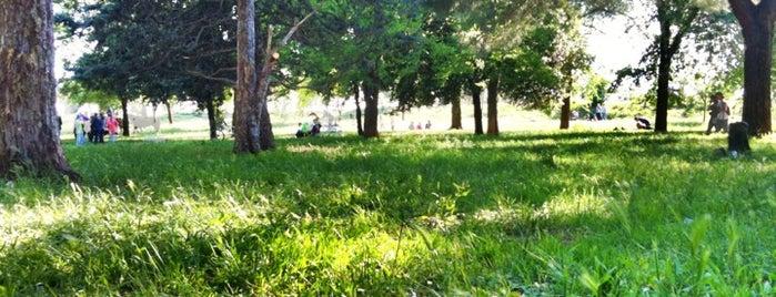 Parco degli Acquedotti is one of #invasionidigitali 2013.