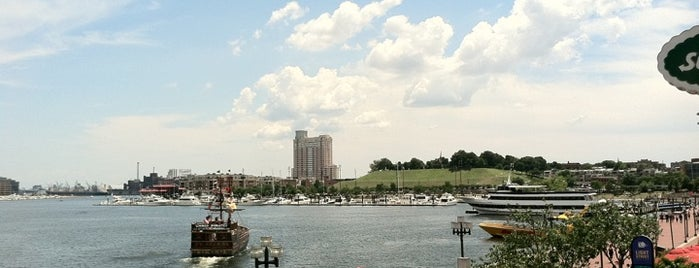 Inner Harbor is one of City Paper's :Baltimore Living: Readers Poll '11.