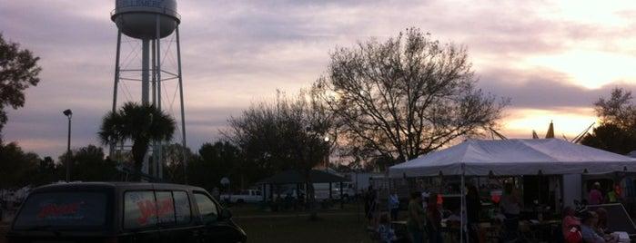 Fellsmere Frog Leg Festival is one of Great Festivals Across United States.