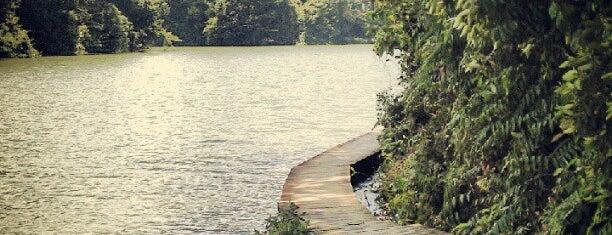 Lower Peirce Reservoir Boardwalk is one of Trek Across Singapore.