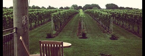 Wölffer Estate Vineyards is one of East Marion Weekend.
