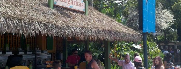 Margarita Stand is one of Walt Disney World - Epcot.