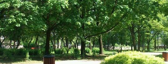 Rów Wełnowiecki is one of Silesian Green Outdoors.