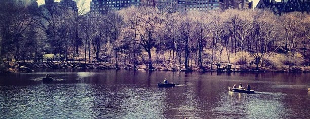 Central Park – The Lake is one of Park Highlights of NYC.