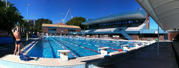 Brisbane 39 S Swimming Pools