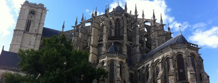 Cathedral of Saint Julian of Le Mans is one of Best of World Edition part 3.
