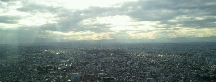 Tokyo Metropolitan Government Building is one of Japan must-dos!.