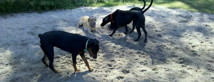 Palmetto County Park - Dog Park is one of Charleston Lowcountry Dog Runs.
