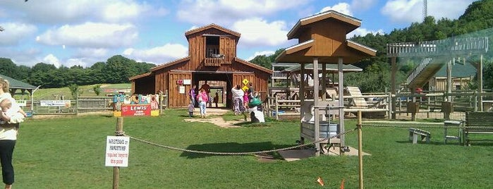 Lewis Farm Market & Petting Farm is one of Fun Go-to-Spots.