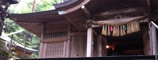 Kushifuru Shrine is one of 神社.