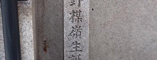 幸野楳嶺生誕地 is one of 近現代.