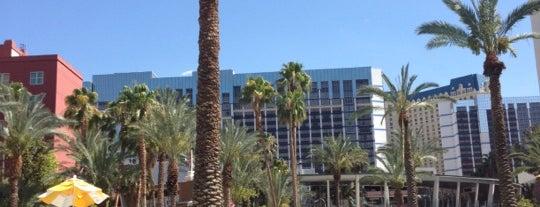 Las Vegas Flamingo Tom Jones 2013