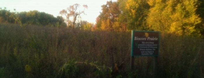 Biocore Prairie is one of Fresh Air Around Madison, WI.