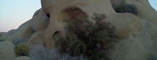 Skull Rock is one of Psalm Sprangs.