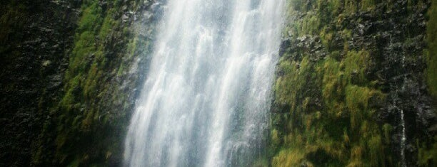 Waimoku Falls is one of World.