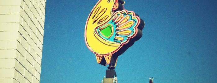 Fresa's Chicken al Carbon is one of #Austin.