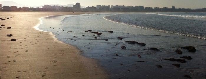 Playa de La Salvé is one of Les chemins de Compostelle.
