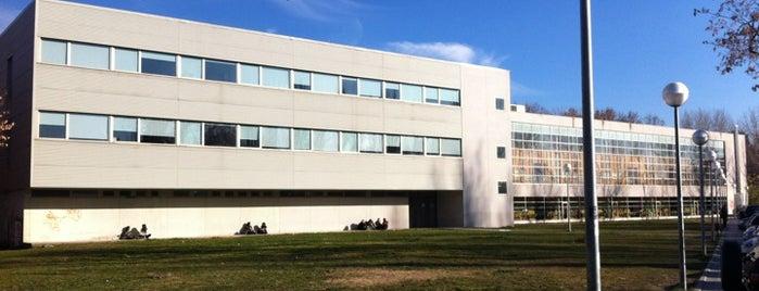 Facultad de Ciencias de la Información (UCM) is one of Publicidad y RR. PP..