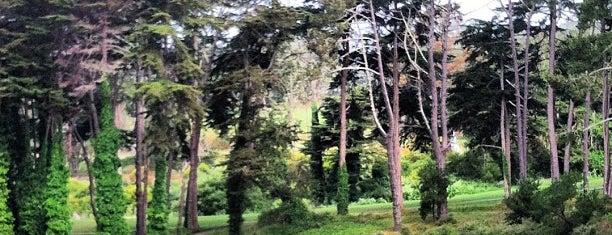 Presidio Golf Course is one of San Francisco, my love..