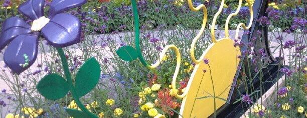 Green Bay Botanical Garden is one of Family fun!.