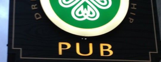 McNally's Irish Pub is one of Watering Holes.