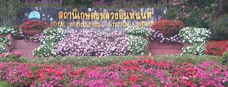 สถานีเกษตรหลวงอินทนนท์ (Royal Agricultural Station - Inthanon) is one of Guide to the best spots Chiang Mai|เที่ยวเชียงใหม่.