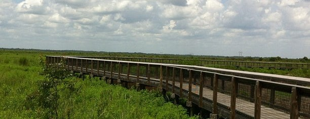 Paynes Prairie Preserve State Park is one of Places to visit.