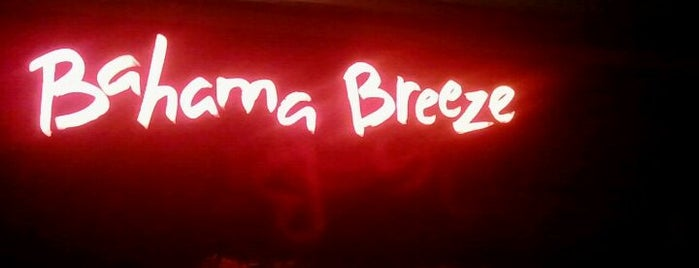 Bahama Breeze is one of The 15 Best Places for a Seafood in Raleigh.