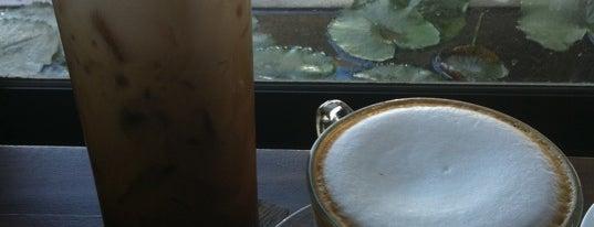 Doi Chaang Coffee is one of Around Bangkok | ตะลอนทัวร์รอบกรุงฯ.