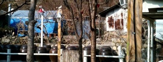 민들레 is one of Time out Chungju.