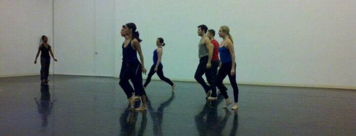Paul Taylor Dance Company is one of Dance.