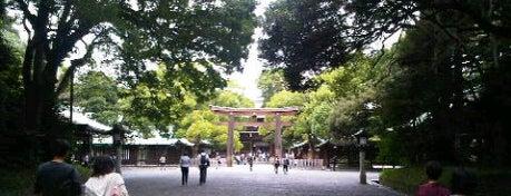 Meiji Jingu Shrine is one of Tokyo as a local.