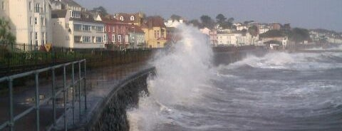 Dawlish is one of zeus.